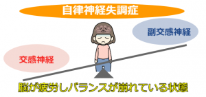 自律神経 (3)