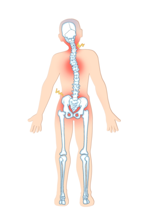骨盤が歪む原因を根本から整えます